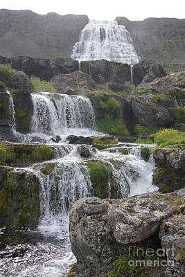 Photograph - Dynjandi Waterfall Iceland 1 by Rudi Prott