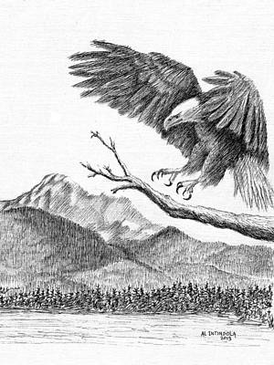 Drawing - Eagle 4 by Al Intindola