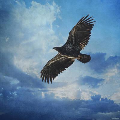 Photograph - Eagle Art - Like An Eagle by Jordan Blackstone