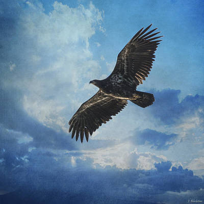 Eagle Art - Like An Eagle Art Print by Jordan Blackstone