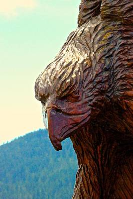 A Hot Summer Day Photograph - Eagle by Brian Sereda