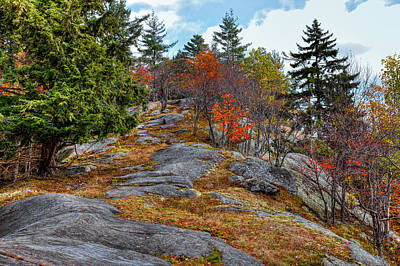 Fir Trees Photograph - Eagle Cliff Above Eagle Bay Ny by David Patterson