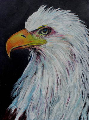 Painting - Eagle Eye by Jeanne Fischer