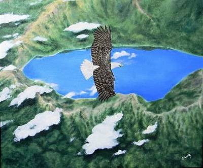 Painting - Eagle Eye View by Olga Wing