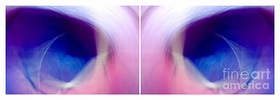 Photograph - Eagle Eyes - Diptych by Douglas Taylor