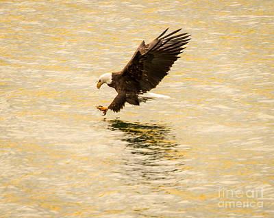 Eagle Fishing At Dusk Art Print by John Holen