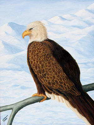Painting - Eagle In Alaska by Lorraine Foster