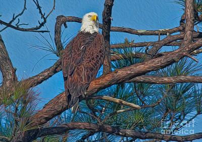 Eagle In Oil Art Print by Deborah Benoit
