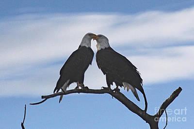 Eagle Love Art Print