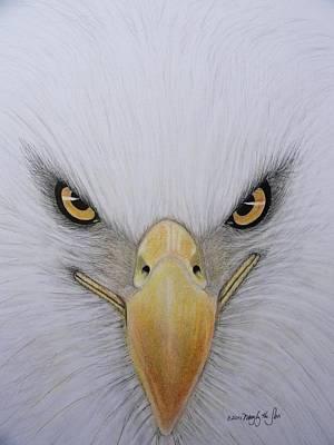 Osprey Mixed Media - Eagle by Mary  By The Sea