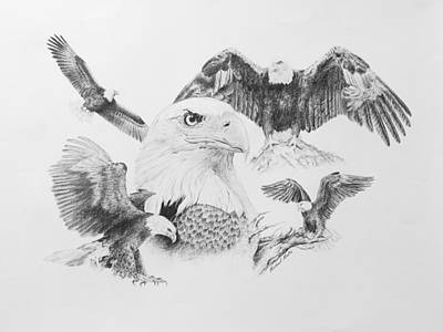 Eagle Drawing - Eagle Montage by Michael Malta