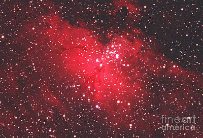 M 16 Photograph - Eagle Nebula by Chris Cook