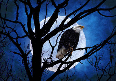 Eagle Night Art Print by Gary Smith