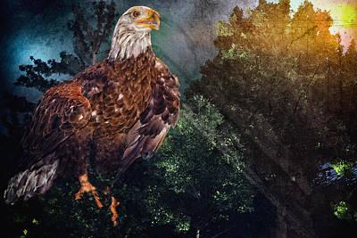 Digital Art - Eagle Overlay by Mary Almond