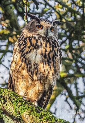 Eagle Digital Art - Eagle Owl Bubo Bubo by Liz Leyden