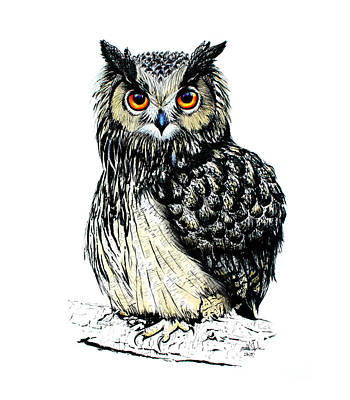 Visual Drawing - Eagle Owl by Isabel Salvador