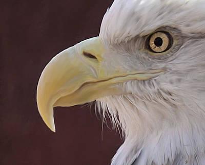 Eagle Portrait Freehand Print by Ernie Echols