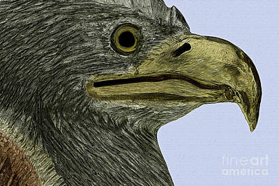 Photograph - Eagle Poster by Phil Cardamone