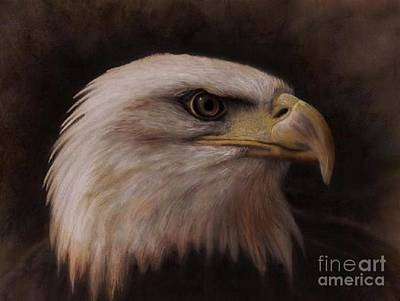 Painting - Eagle Study by Daniel Smith