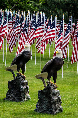 Photograph - Eagles And Flags On Memorial Day by Mick Anderson