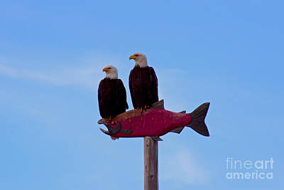 Photograph - Eagles by Deanna Proffitt
