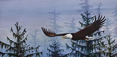 Eagles Freedom Art Print
