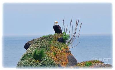 Photograph - Eagles Landing by Phillip Garcia