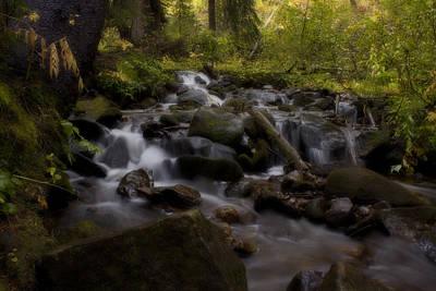 Photograph - Early Autumn Cascades by Ellen Heaverlo