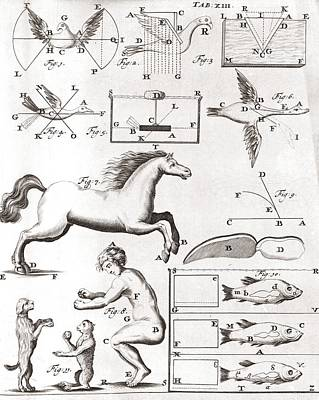 Early Biomechanics, 17th Century Art Print by Science Photo Library