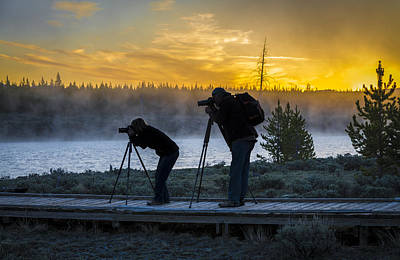 Photograph - Early Birds Yellowstone National Park by James Hammond