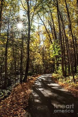 Early Fall On Roaring Fork Road Art Print by Debbie Green