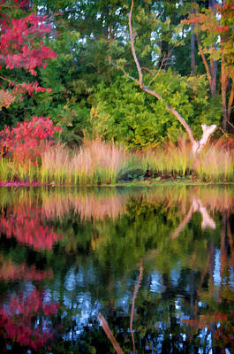 Photograph - Early Fall Reflection by Beth Sawickie
