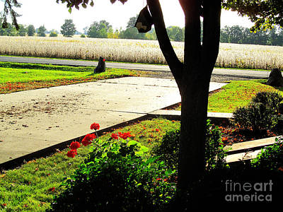 Bath Time Rights Managed Images - Early Fall  Royalty-Free Image by Tina M Wenger