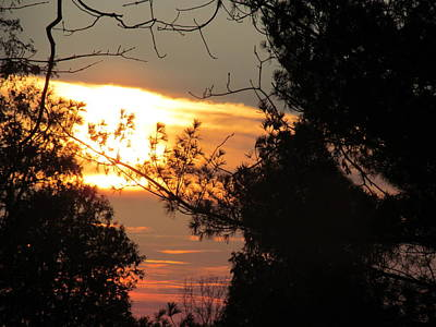 Mannequin Dresses - Early Feb 9 2013 Sunset by Tina M Wenger