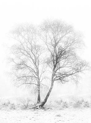 Lonely Tree Wall Art - Photograph - Early In The Morning by Greetje Van Son
