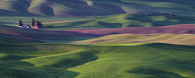 Contour Farming Photograph - Early Light In The Palouse by Latah Trail Foundation