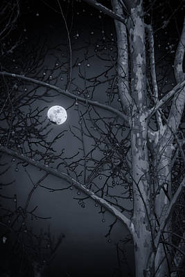 Print featuring the photograph Early Moon In Black And White by Micah Goff