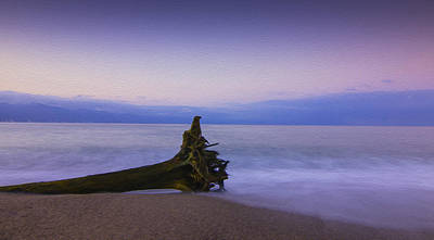 Driftwood Photograph - Early Morning by Aged Pixel