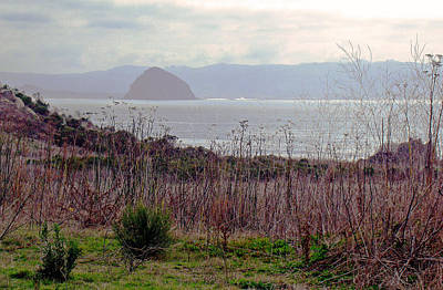 Photograph - Morro Bay Early Morning by Walter Fahmy