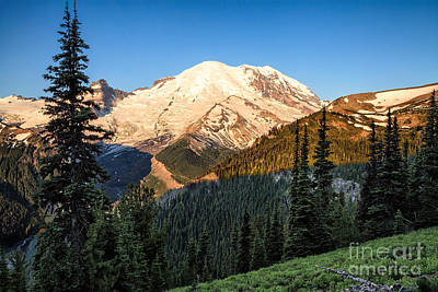 Photograph - Early Morning At Mt. Rainier by Stuart Gordon