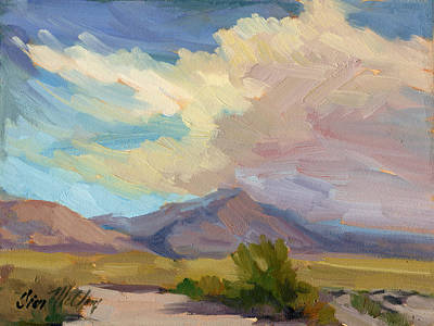 Early Morning At Thousand Palms Art Print by Diane McClary