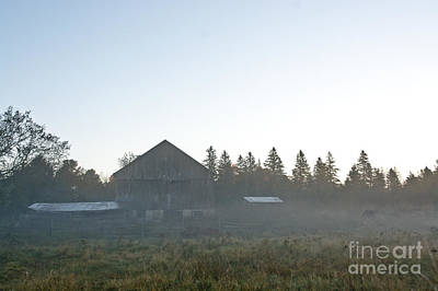 Photograph - Early Morning Barn Scene by Cheryl Baxter