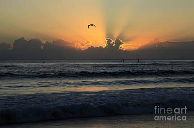 Photograph - Early Morning Flight by Noel Elliot