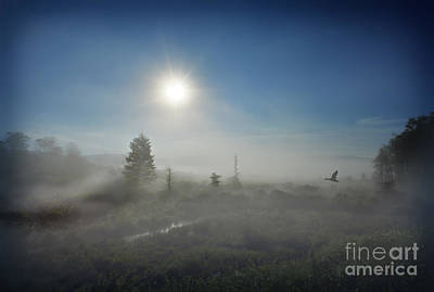 Early Morning Fog At Canaan Valley Art Print by Dan Friend