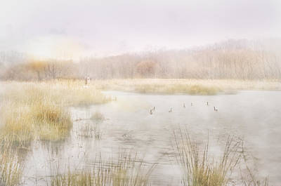 Early Morning Geese Art Print