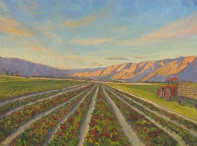 Lettuce Painting - Early Morning Harvest by Maria Hunt