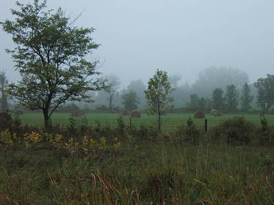 Photograph - Early Morning In The Country by Margaret McDermott