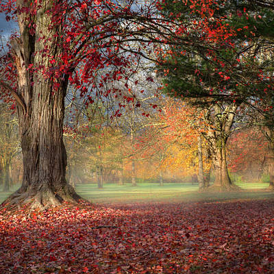 Early Morning In The Park Square Art Print by Bill Wakeley