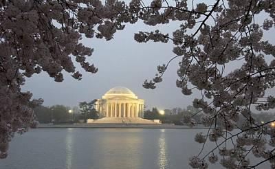 Photograph - Early Morning In Washington by Kathi Isserman