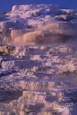 Photograph - Early Morning Light On Minerva Springs Yellowstone National Park by Dave Welling